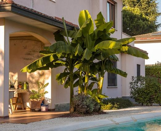 exterior - RELOCATION MONZA APARTMENT IN PRESTIGIOUS VILLA - Lesmo - rentals
