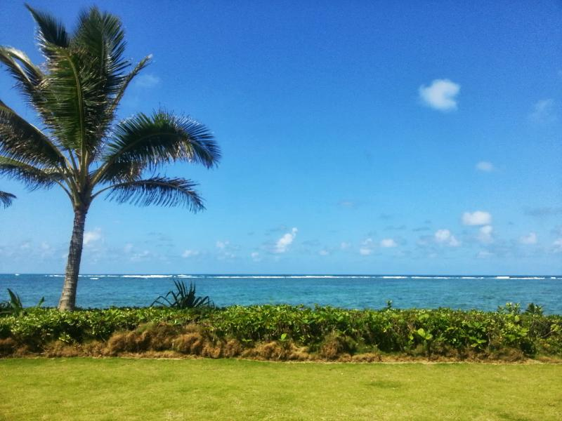 Sandy Beach Cottage with Breathtaking Ocean Views - Image 1 - Hauula - rentals