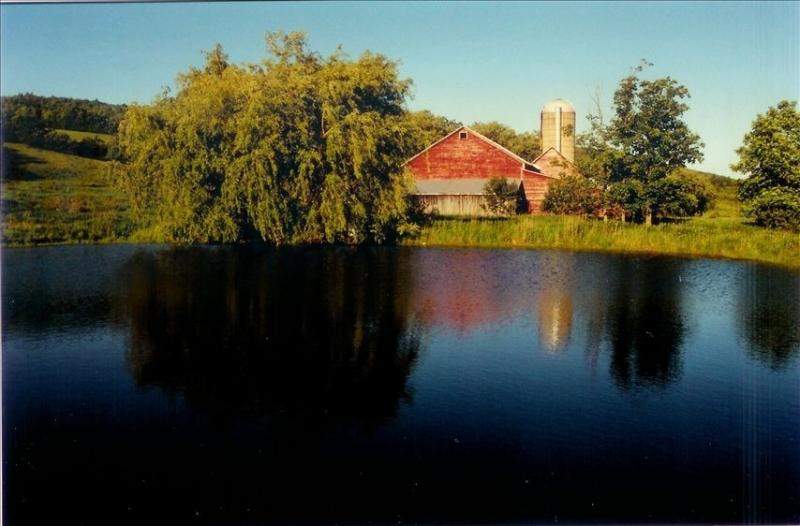 Handmade House on 70 secluded acres - Image 1 - Cobleskill - rentals