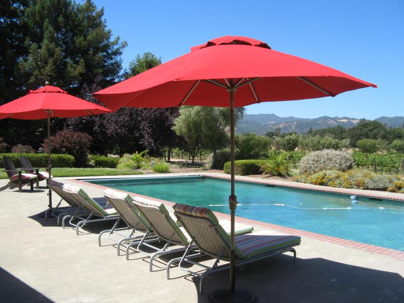 Poolside overlooking vineyard and mountain view - Secluded Sonoma Country Retreat, Views, Pool-Spa - Sonoma - rentals