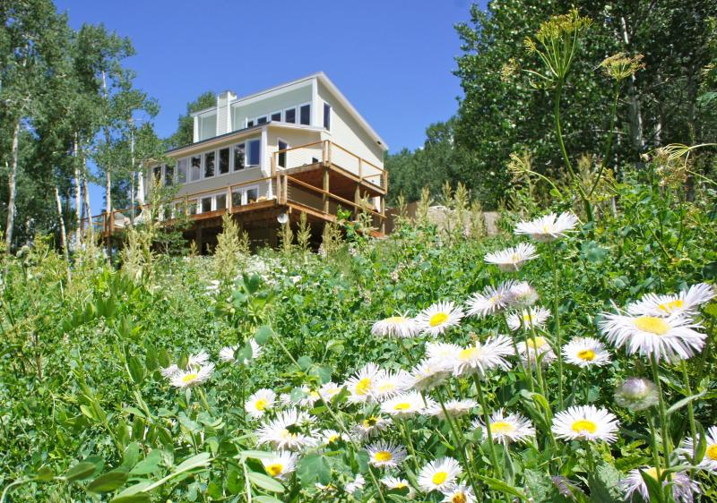Crested Butte summer - New 5,000 square-ft, ski-in, ski-out mountain home - Crested Butte - rentals