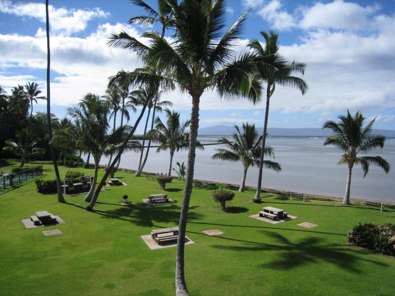 Views from the lanai - Oceanfront Molokai Shores ~ Lush tropical setting - Kaunakakai - rentals