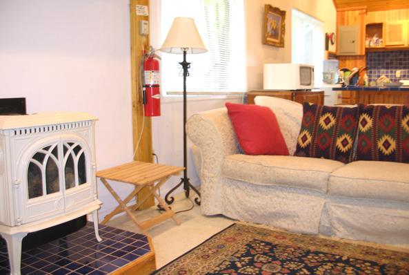 Casa De Luz Lodge with fireplace & porch overlook - Image 1 - Watervliet - rentals