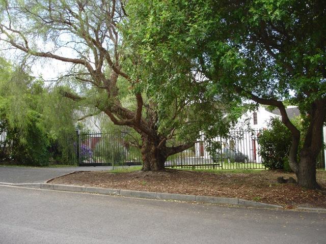 """Approach - """"Joyphil Place"""" - Cape Town - rentals"""
