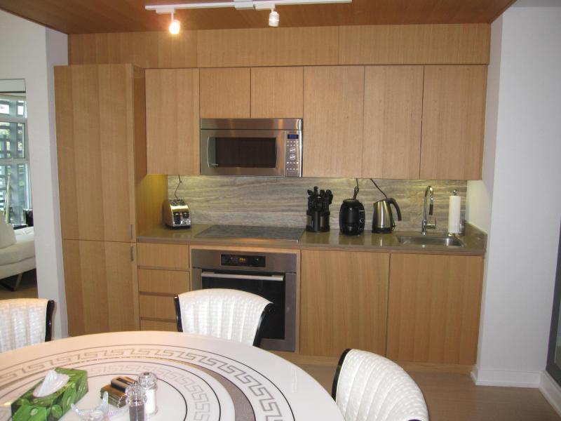 LUXURY DUPLEX DOWNTOWN TOWN HOUSE - Image 1 - Toronto - rentals