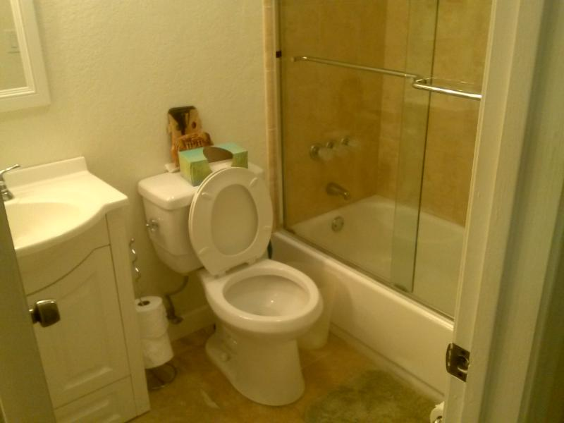 Guest Bathroom - Updated FURN 2/2 Villa w/Comm Pool in Sunny South Florida - Pembroke Pines - rentals