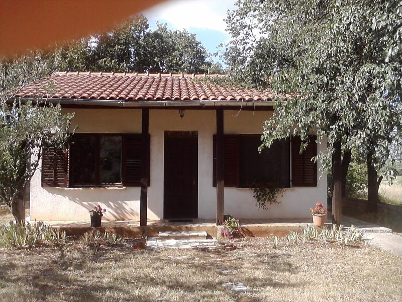 Small house in quet area, animals alowed -  garden - Image 1 - Umag - rentals