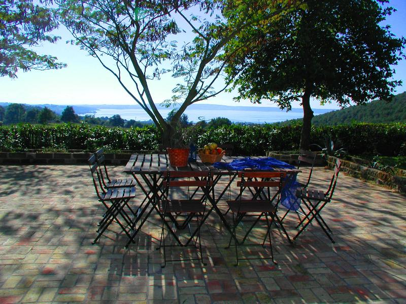 Lakeview Patio - Stunning Lakefront Villa near Rome, Private Pool - Rome - rentals