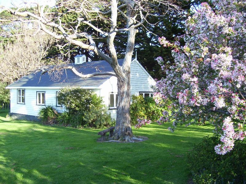 The Cottage - Waituna Cottage - Featherston - rentals