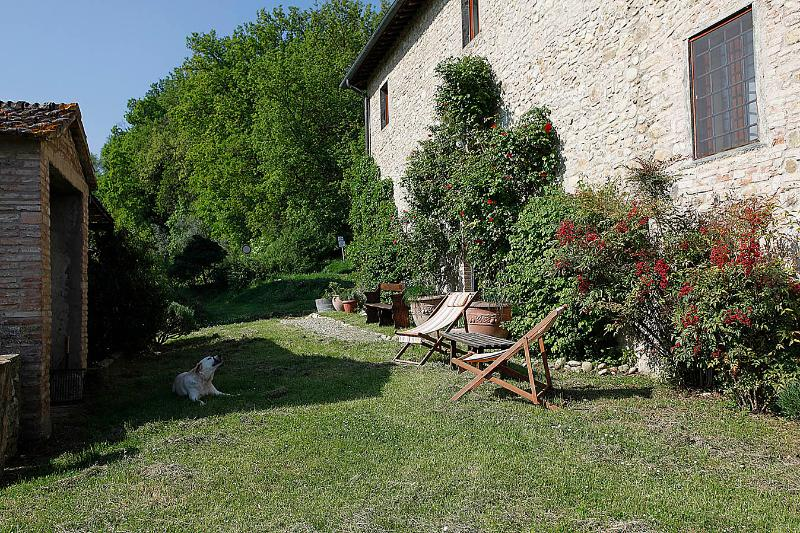 garden - Beautiful Tuscan country house with pool, Chianti - San Casciano in Val di Pesa - rentals
