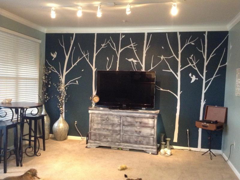 First half - SOCO Apt with use of Jeep Wrangler!!! - Austin - rentals