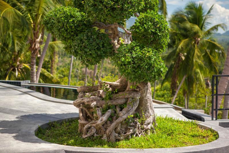 Villa Eveline, Sunset Sea View 3 Bedroom Villa - Image 1 - Thailand - rentals