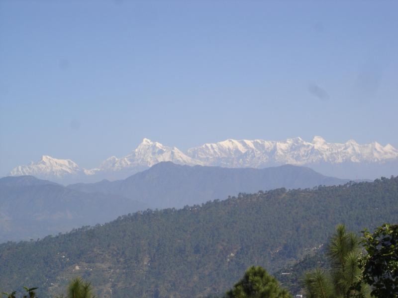 Snow Peak views from Marigold Cottage - Merigold Cottage- Bliss, peace  and happiness. - Ranikhet - rentals