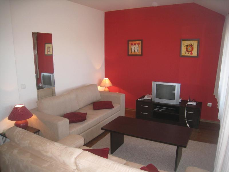 Relaxing, comfortable lounge. - Bansko Royal Towers Spacious 2 Bed apartment - Bansko - rentals