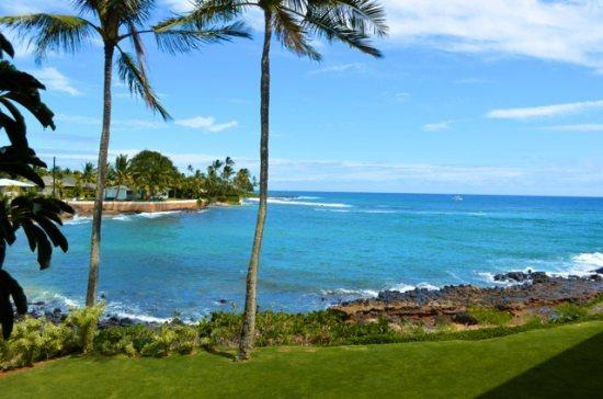 View from Lanai  - Free Car* Kuhio Shores 201 Beautiful Ocean Front 1bd, 1bath Condo - Poipu - rentals