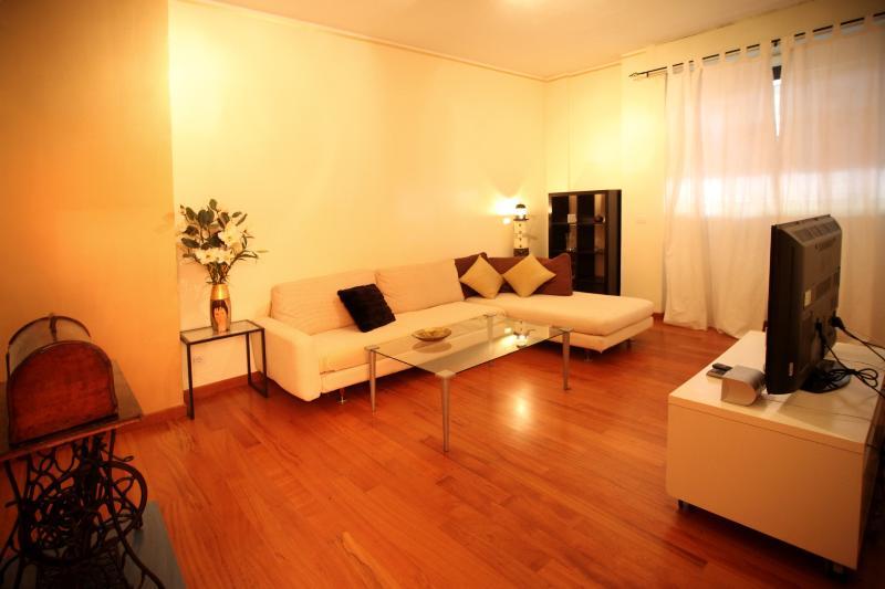 gold living room - wonderful  big flat milano central&fiera freewifi - Milan - rentals