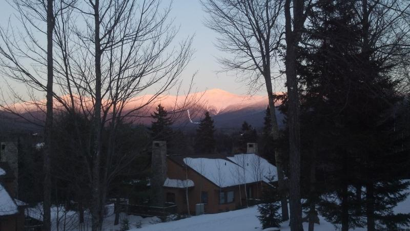 Bretton Woods Forest Cottage....Trailside ski-in ski-out! - Image 1 - Bretton Woods - rentals