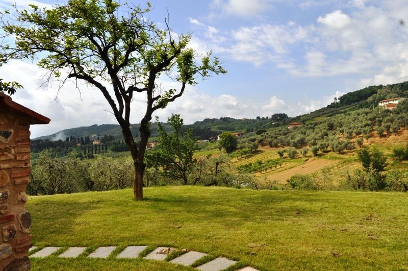 Villa Il Gelsomino With Ac - Image 1 - Arliano - rentals