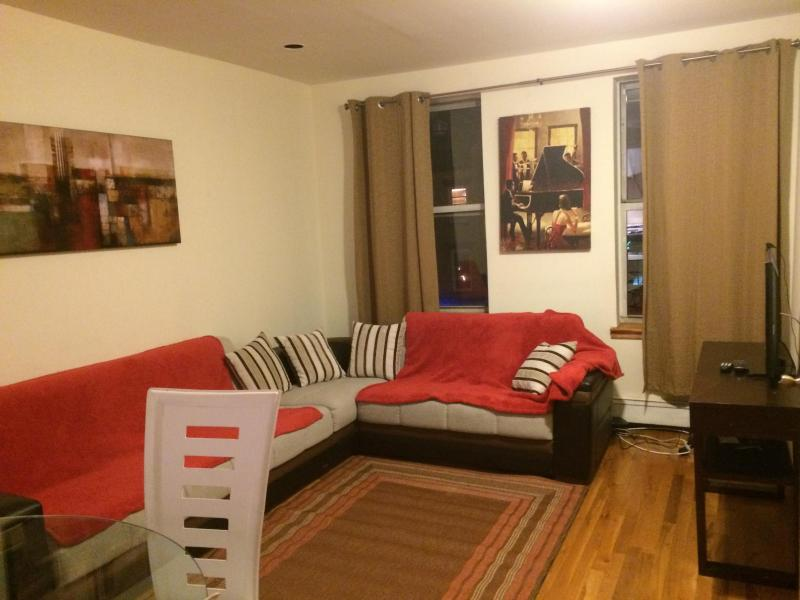 living room with convertible sofa bed - AMAZING 3 BEDROOM APARTMENT - New York City - rentals