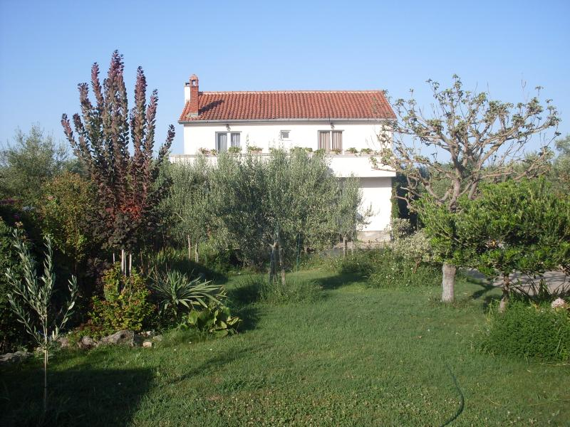 Apartment Goran - Image 1 - Zadar - rentals