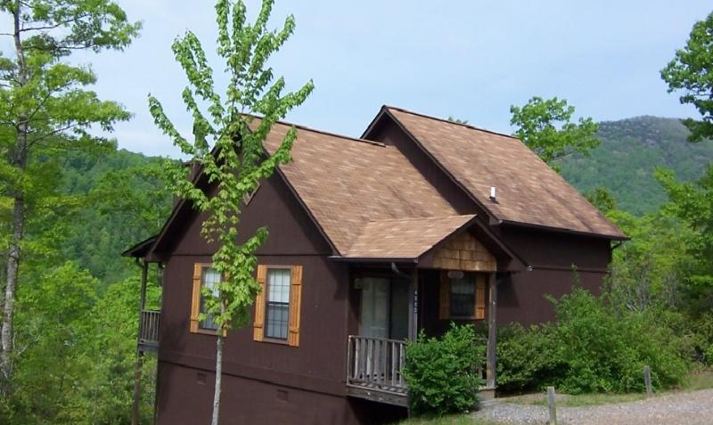 The Aster cabin - The Aster Cabin at Laurel Mountain Cabins - Hiawassee - rentals