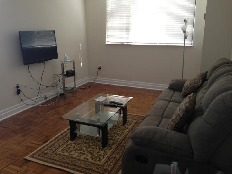 Beautifully Fully Furnished Luxury Apartment - Image 1 - Toronto - rentals
