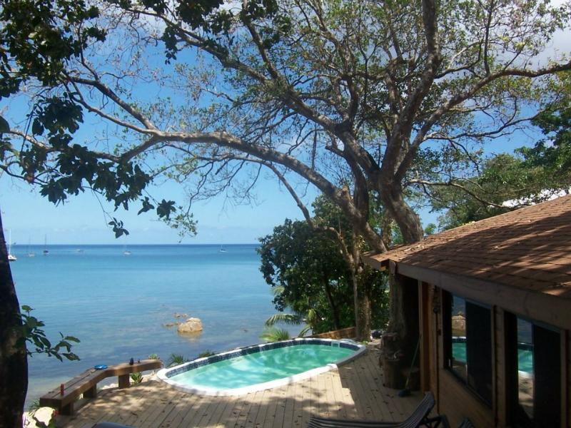 Cant beat the view from the pool - Ocean & Beach Front West Bay Beach 1 Bedroom Seahorse Villa - Roatan - rentals