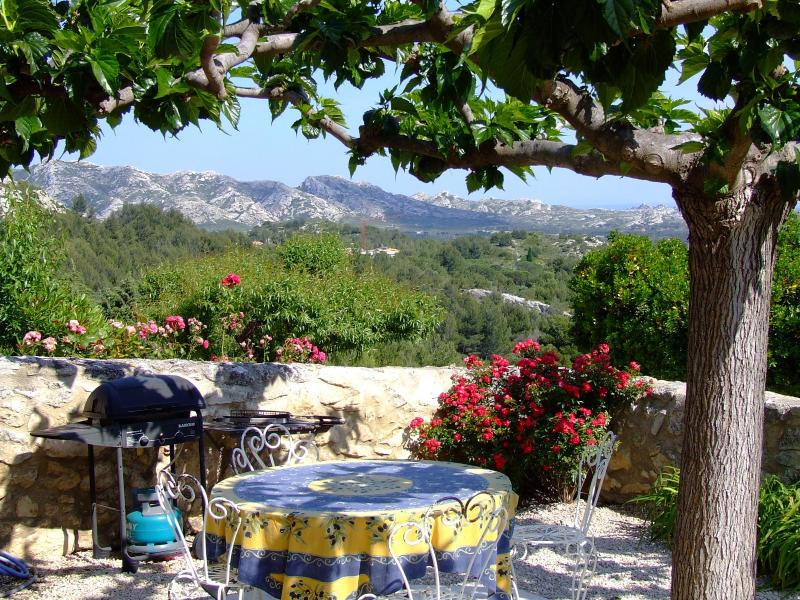 paradise in provence - Paradise in Provence- Vacation Rental with a Fireplace, Pool, and Grill - Les Baux - rentals