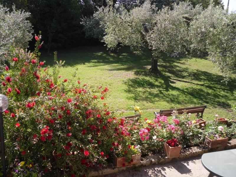 View from the apartment - An independant apartment in large rural house - Montelibretti - rentals
