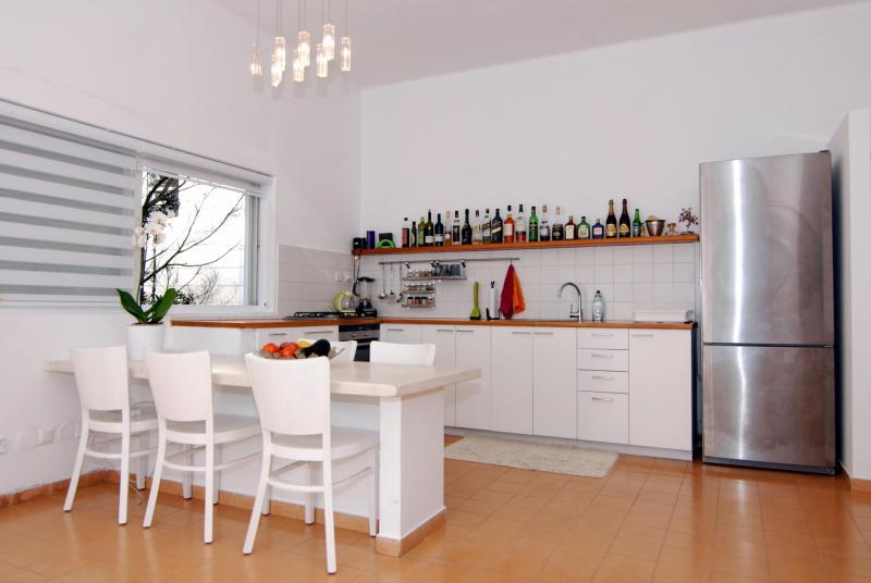 Bograshov – Beautiful Beach Front Apartment - Image 1 - Tel Aviv - rentals