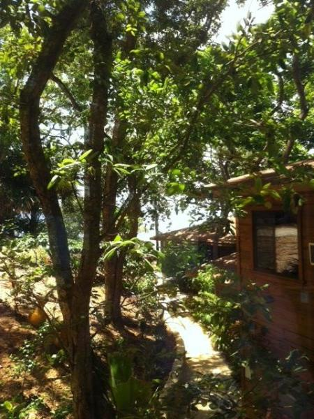 The Jellyfish Studio Villa has awesome Ocean Views - Image 1 - Roatan - rentals
