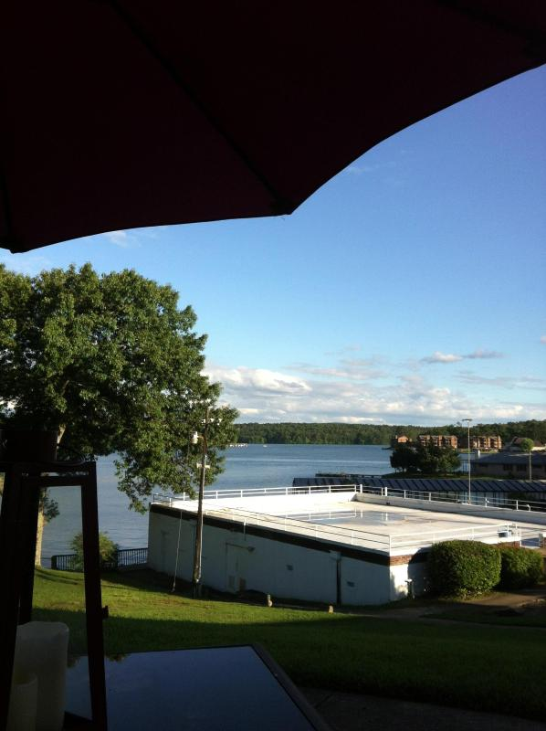 the view - quaint lake cottage with great view - Hot Springs - rentals