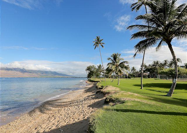 Maui Sunset #A-103 Oceanfront Complex, Ground Floor, 1 Bd 2 Bath Great Rates! - Image 1 - Kihei - rentals