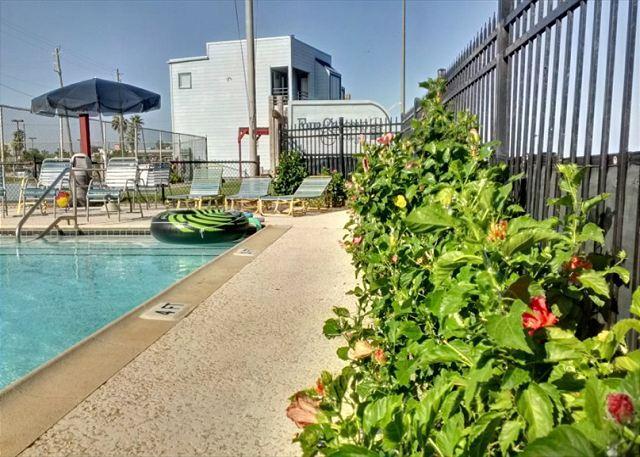 Beachfront, Wi-Fi, 2 Story - Image 1 - Galveston - rentals