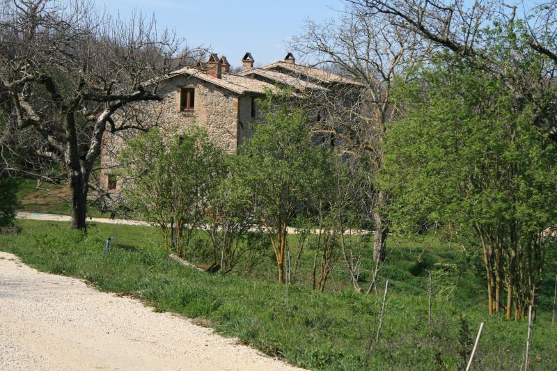 CASALE VIGNOLO - CASALE VIGNOLO, La Casa - Orvieto - rentals