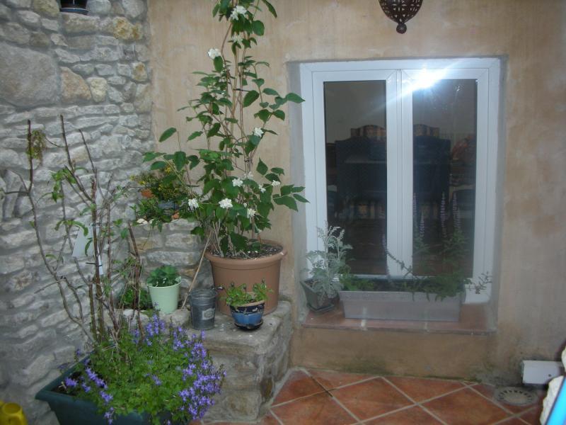 Courtyard - Charming  house in the heart of L'Isle sur Sorgue - L'Isle-sur-la-Sorgue - rentals