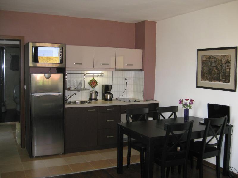 Apartment in Bansko, next to Gondola & Kempinski - Image 1 - Bansko - rentals