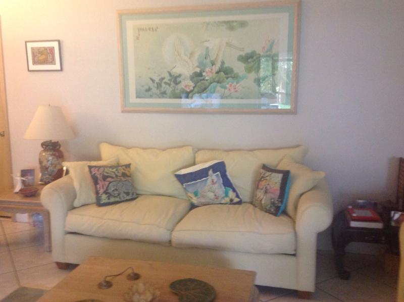 Living room sofa - Ranchita Relax-o - Bonita Springs - rentals