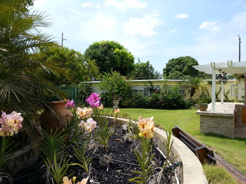 KINGSTON COTTAGE - Garden view. - KINGSTON COTTAGE - Tropical Serenity - B&B - Kingston - rentals