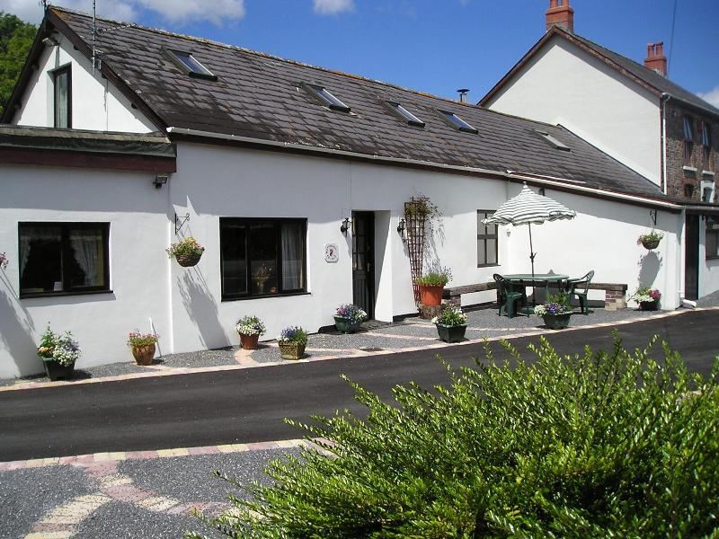 Maesachddu Farm Cottage - MAESACHDDU FARM COTTAGE - Carmarthen - rentals