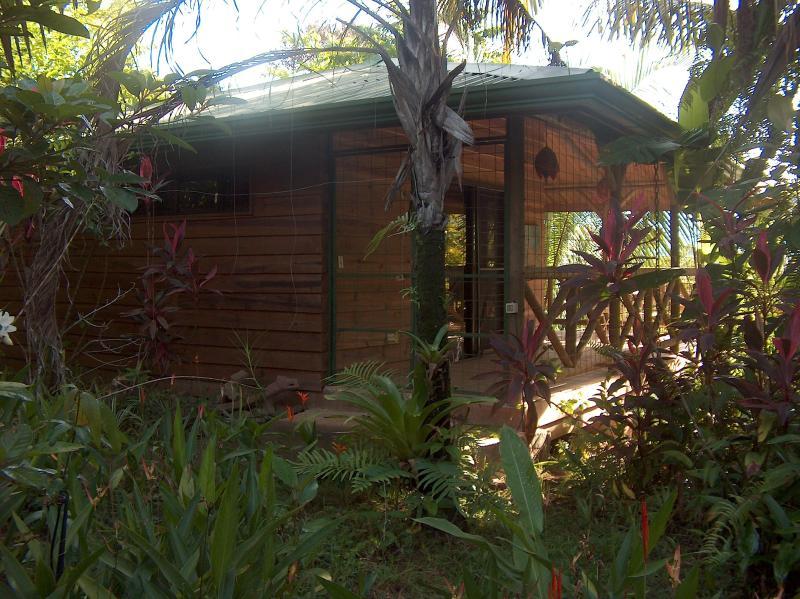 Chalets - luxuriant- garden chalets east - Quepos - rentals