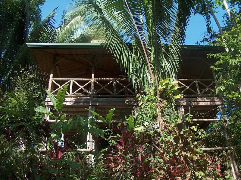 Chalet north from jungle - luxuriant garden chalets north - Quepos - rentals