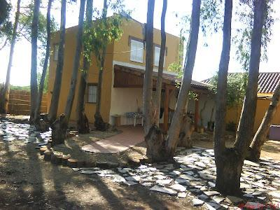 Beautiful cottage at the beach with private garden (500m2) in South of Spain - Image 1 - Los Canos de Meca - rentals