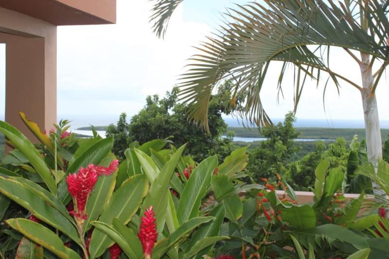 Bayview with Pool Suite - Image 1 - Isla de Vieques - rentals