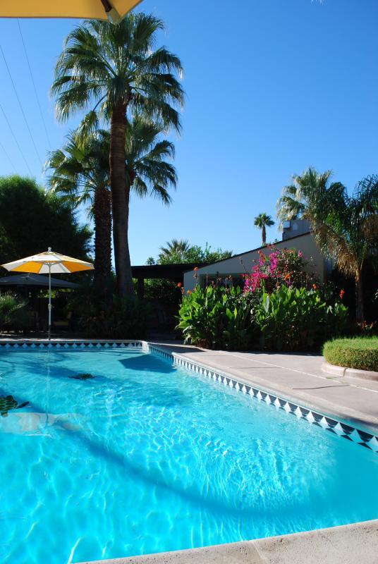 Huge private pool and hot tub - Historic Spanish Hacienda Estate - Palm Springs - rentals