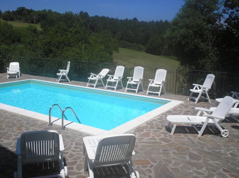 piscina - Great 3 Bedroom Villa on the Hills of Tuscany - Chiusdino - rentals