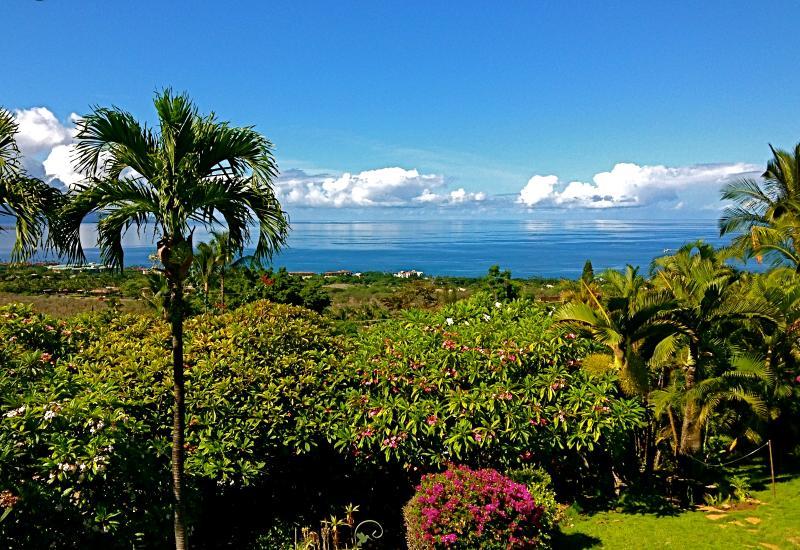 Maui Ocean Palms - Panoramic ocean view from your front lanai - Maui Ocean Palms-Luxury  Wailea  Home wPool, Views - Wailea - rentals