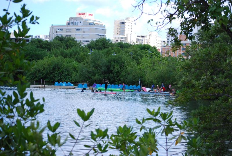 Prime location by the Condado Lagoon Park - New! Cozy  Garden studio By The Condado Lagoon - Puerto Rico - rentals