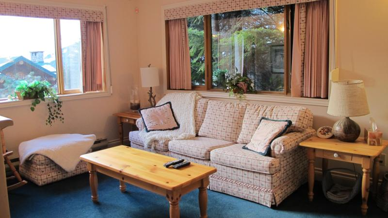 Bright living room with sofa bed - 1 BR Ski In Ski Out in Creekside - Whistler - rentals