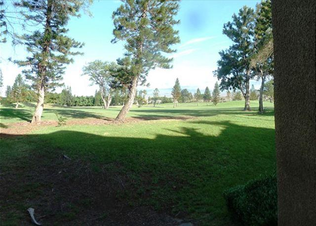 Golf Course View - Waikoloa Fairways C118-WF C118 - Kohala Coast - rentals